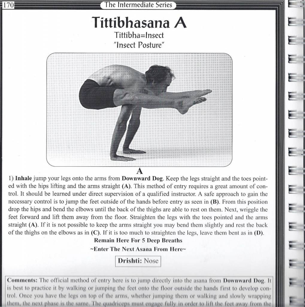 ashtanga yoga the practice manual by david swenson pdf